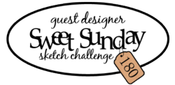 Guest Designer Badge 180